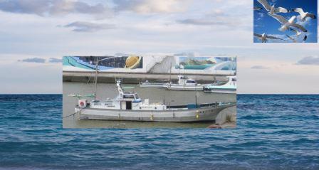 中小企業は漁船です。w.jpg