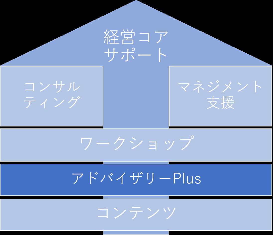 P体系アドバイザリーplus.png