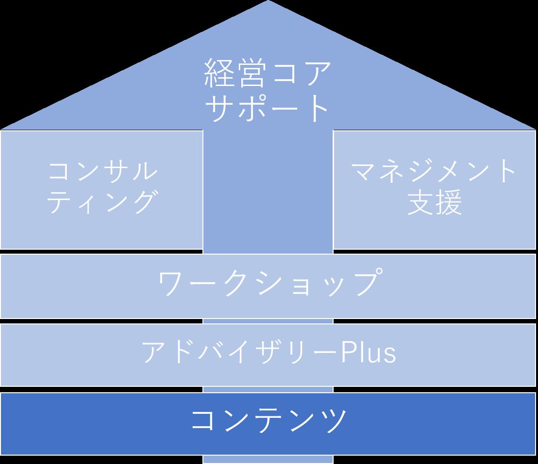 P体系コンテンツ.png